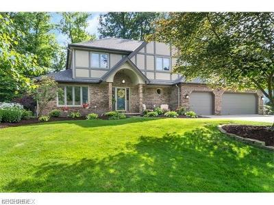Brecksville Single Family Home For Sale: 3511 Sweetwater Dr