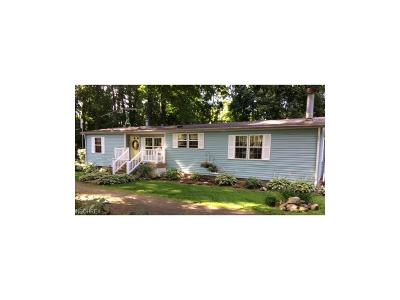 Lake County Single Family Home For Sale: 155 Riverside Dr