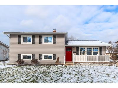 Wickliffe Single Family Home For Sale: 30265 Twin Lakes Dr