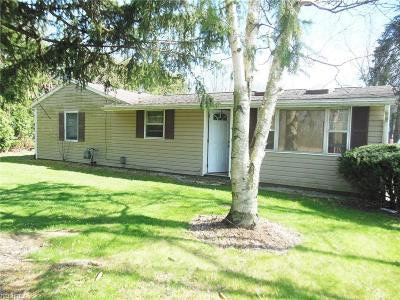 Chippewa Lake Single Family Home For Sale: 483 Shorefield Dr