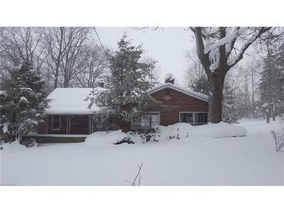 Geauga County Single Family Home For Sale: 8259 Plank Rd