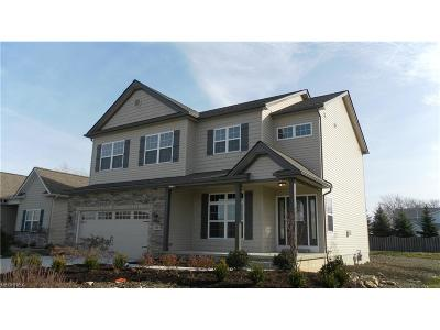 Lake County Single Family Home For Sale: 2 River Rd #SL2