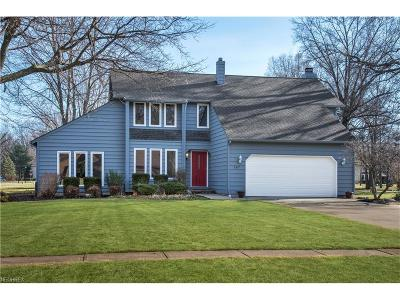Avon Lake Single Family Home For Sale: 287 Greenbriar Dr