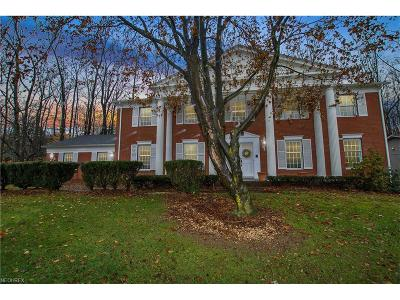 Brecksville Single Family Home For Sale: 8708 Bradford Ln