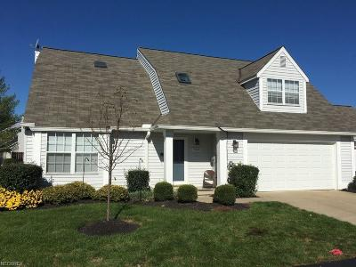 Twinsburg Condo/Townhouse For Sale: 9528 Ridge Ct #17