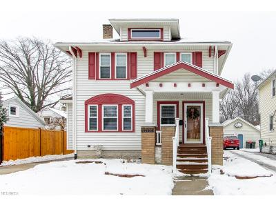 Elyria Single Family Home For Sale: 251 Stanford Ave