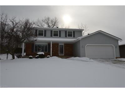 Parma Single Family Home For Sale: 6415 Ely Vista Dr