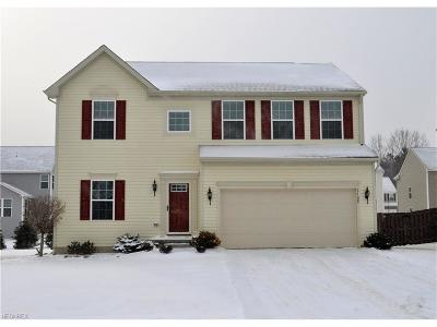 Twinsburg Single Family Home For Sale: 3168 Liberty Ledges Dr