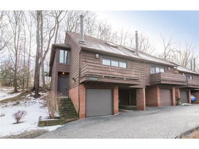 Chagrin Falls Single Family Home For Sale: 215 Solon Rd #215A