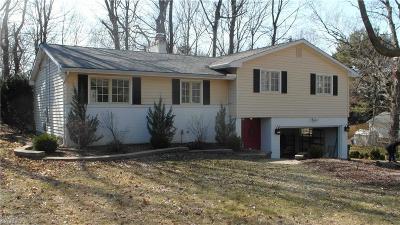Mentor Single Family Home For Sale: 6910 Roosevelt Ave