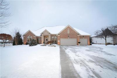 Poland Single Family Home For Sale: 8569 Catarina Pl