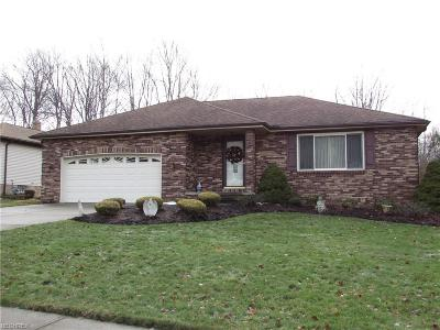 Parma Single Family Home For Sale: 9901 Running Brook Dr