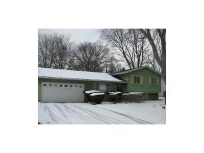 Copley Single Family Home For Sale: 1382 Copley Meadows Dr