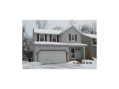 Mentor Single Family Home For Sale: 4858 Lakeview Dr