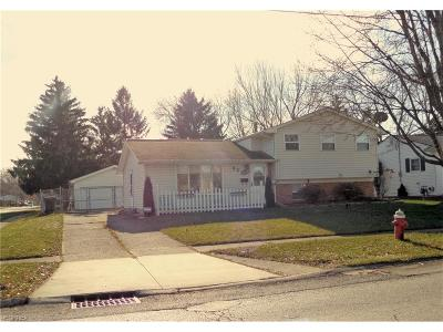 Elyria Single Family Home For Sale: 853 Sandalwood Dr