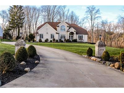 Willoughby Hills Single Family Home For Sale: 38018 Pleasant Valley Rd