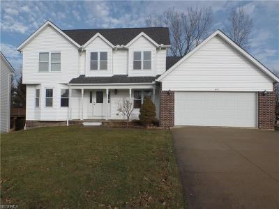 Medina Single Family Home For Sale: 433 Sturbridge Dr