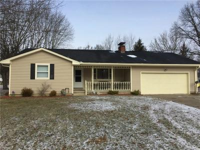 Youngstown Single Family Home For Sale: 498 East Liberty St