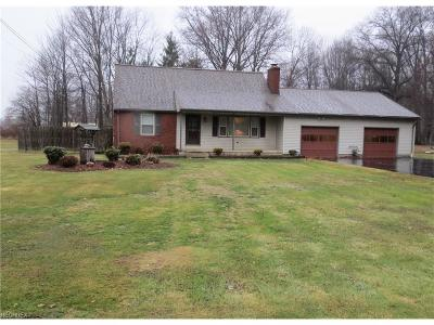 Vienna Single Family Home For Sale: 779 Swift Dr