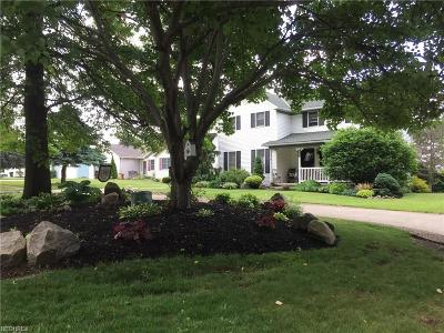 Wadsworth Single Family Home For Sale: 461 Silvercreek Rd
