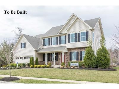 North Ridgeville Single Family Home For Sale: 9338 Winfield Ln