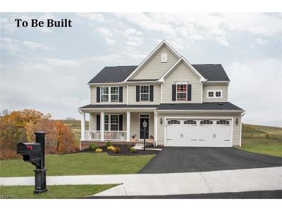 North Ridgeville Single Family Home For Sale: 9325 Winfield Ln