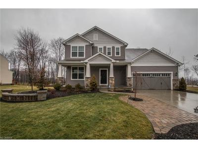 Strongsville OH Single Family Home For Sale: $405,000