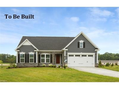 North Ridgeville Single Family Home For Sale: 9409 Winfield Ln