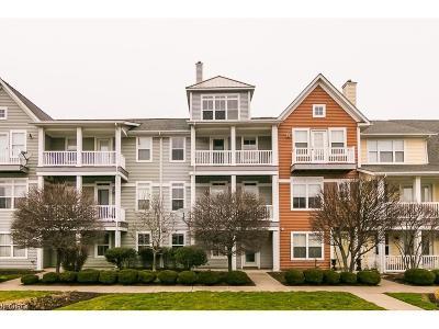 Lorain Single Family Home For Sale: 363 California Ave