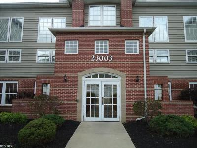 Olmsted Falls Condo/Townhouse For Sale: 23003 Chandlers Ln #333