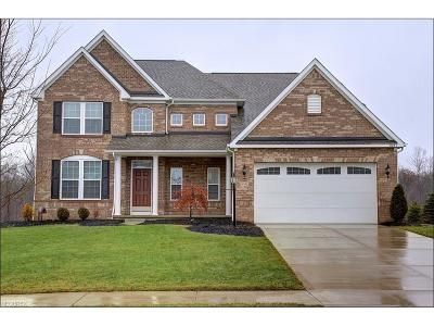 Twinsburg Single Family Home For Sale: 8041 Megan Meadow Dr