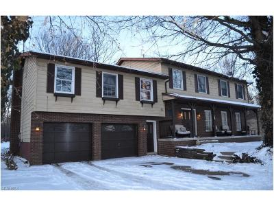 Summit County Single Family Home For Sale: 380 Trunko Rd