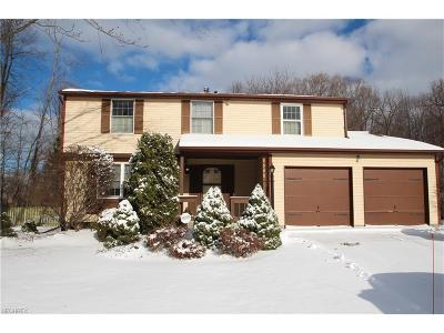 Mentor Single Family Home For Sale: 6595 Ivana Ct