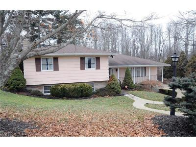 Guernsey County Single Family Home For Sale: 1505 North 10th St
