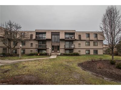 North Royalton Condo/Townhouse For Sale: 9530 Cove C-32