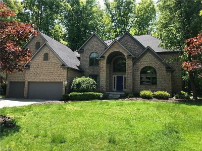 Copley Single Family Home For Sale: 4250 Cobblestone Dr