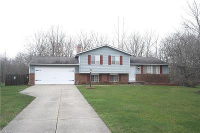 Summit County Single Family Home For Sale: 8694 Crow Dr