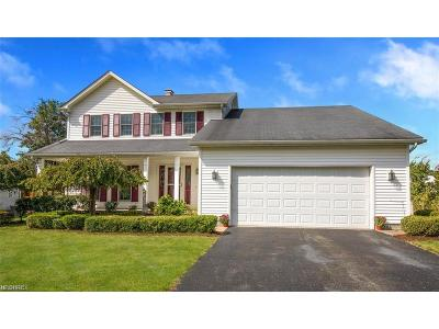 Austintown Single Family Home For Sale: 1912 Countryside Dr