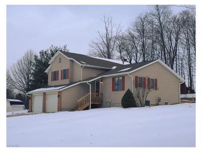 Medina Single Family Home For Sale: 4999 Gateway Dr