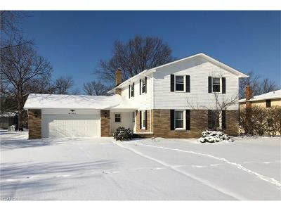 Highland Heights Single Family Home For Sale: 946 Brainard Rd
