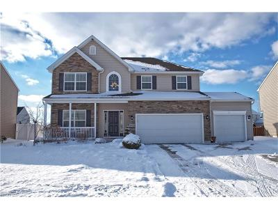 North Ridgeville Single Family Home For Sale: 9022 Franklin Dr
