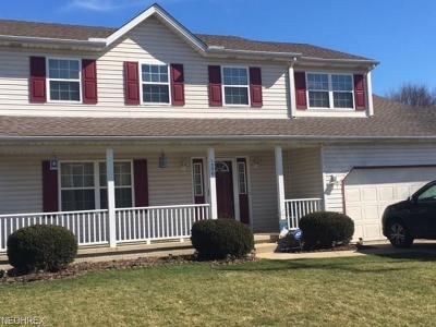 Elyria Single Family Home For Sale: 1350 Abbe Rd South