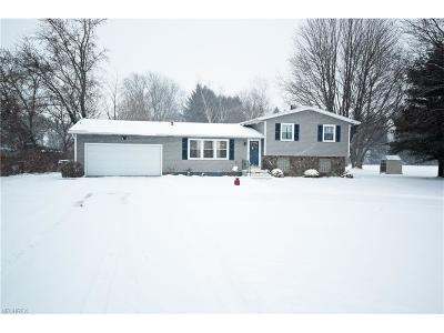 Summit County Single Family Home For Sale: 5591 South Cleveland Massillon Rd