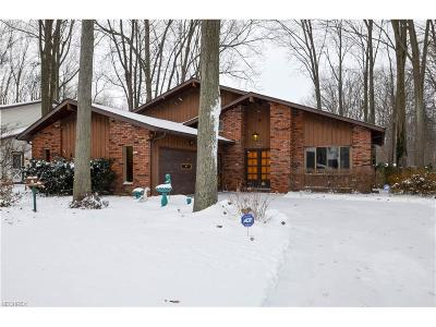 North Ridgeville Single Family Home For Sale: 6532 O'henry Cir