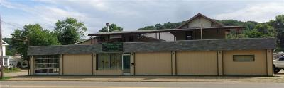 Commercial Sold: 1203 East High Ave