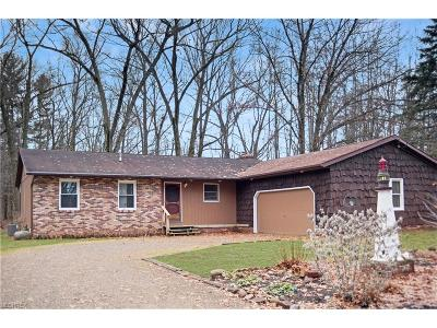 Summit County Single Family Home For Sale: 434 Stoner Rd