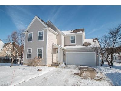 Broadview Heights Single Family Home For Sale: 2723 Sexton Ct