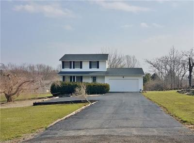 Ravenna Single Family Home For Sale: 5058 State Route 303