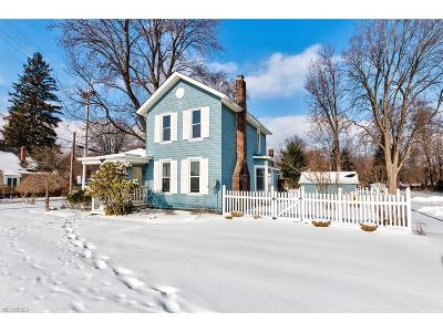 Painesville Single Family Home For Sale: 645 Madison Ave