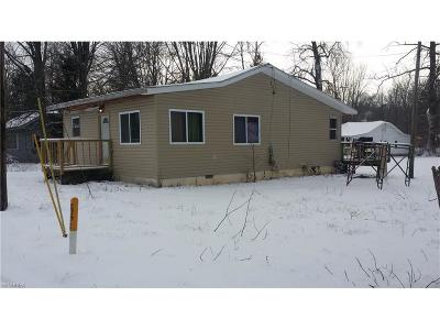 Chippewa Lake Single Family Home For Sale: 21 Bigelow Dr